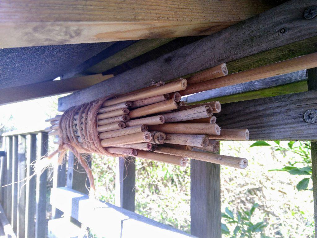 bihotell bambu med tak